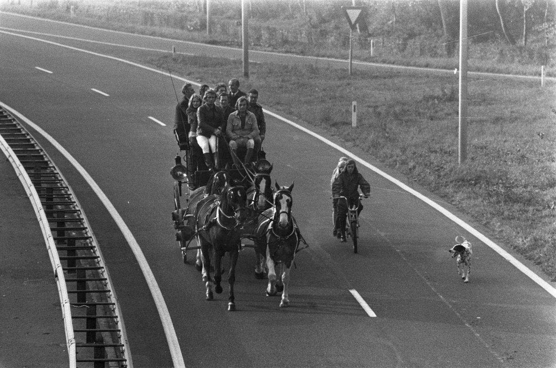 autopistas-holanda-sin-coches-9