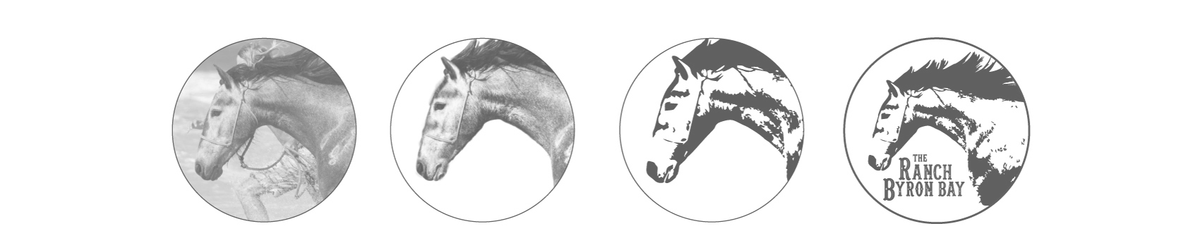 logo_process.jpg