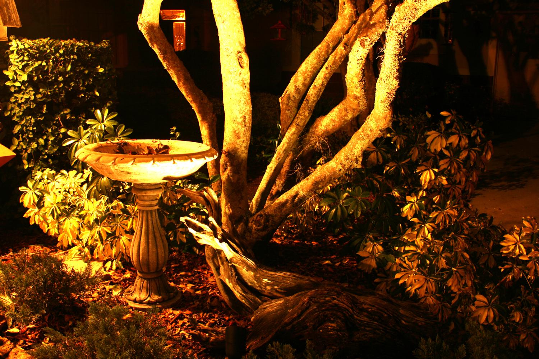Landscape3.jpg.jpg