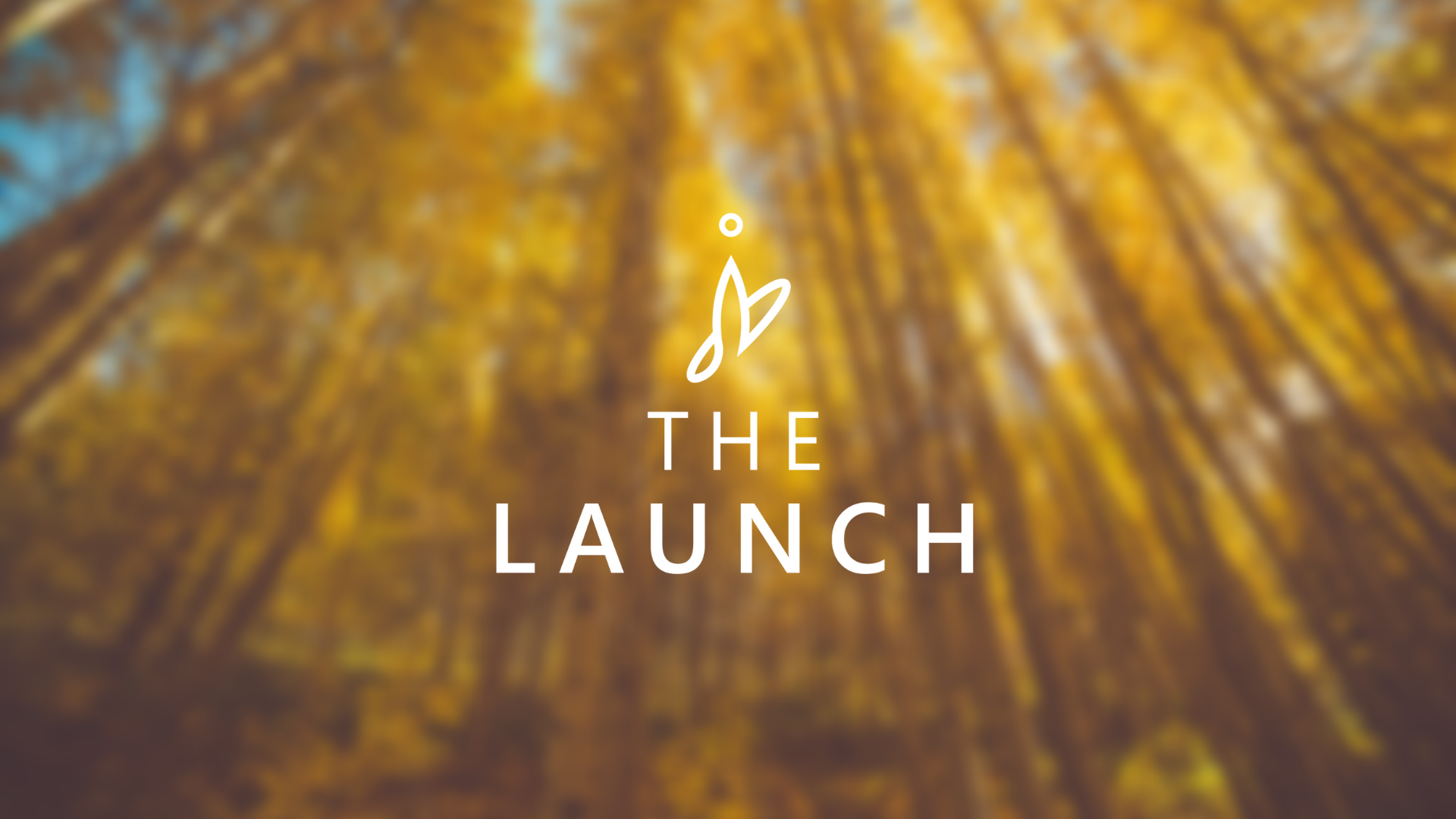launchpad-02.png