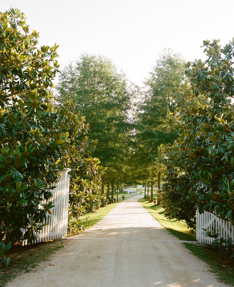 Radiant Southern Charm, Events by Reagan, Virginia Wedding, Destination Wedding Planner