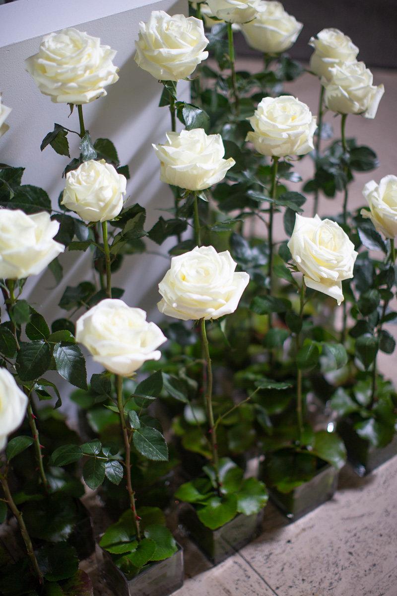 Kansas City, Events by Reagan, Charleston Event Planner, Wedding Dinner, Wedding Reception, Museum Wedding, Floral, White Roses