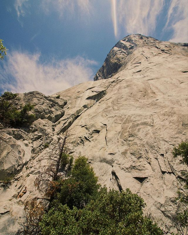 Hey @alexhonnold... you're not the only one who's free solo'ed El Cap! (i just didn't make it quite as far...) #FreeSolo #Yosemite #ElCapitan