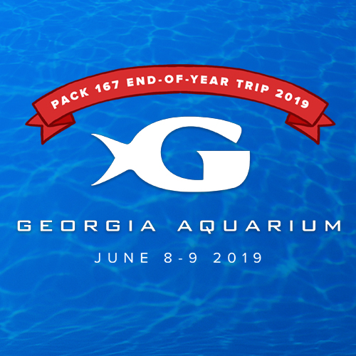pack167_georgia_aquarium.jpg