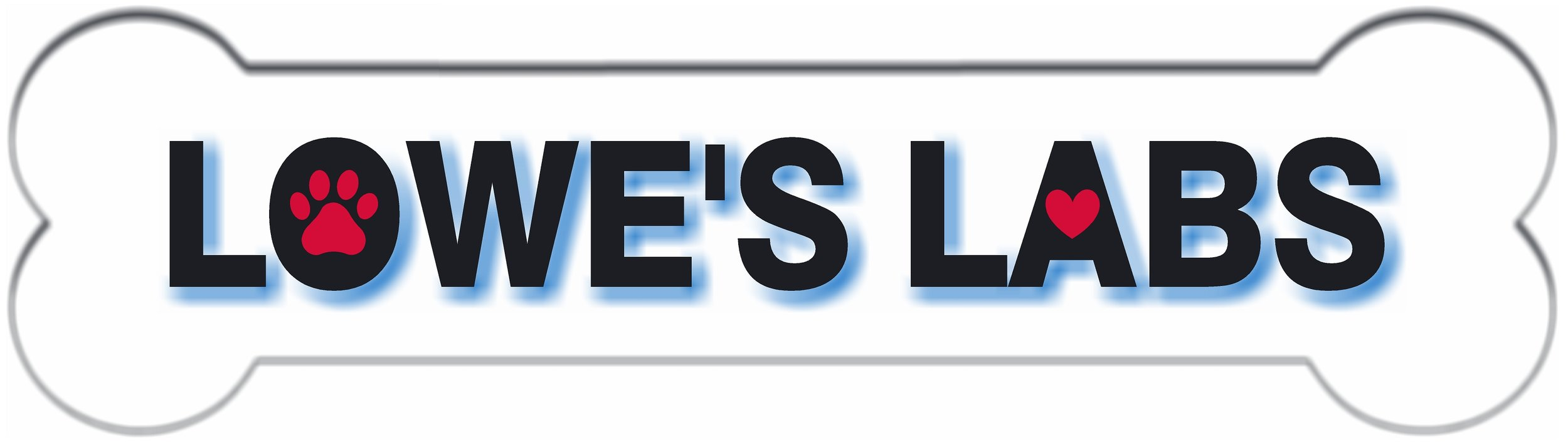 LOWE'S LABS LOGO.jpg