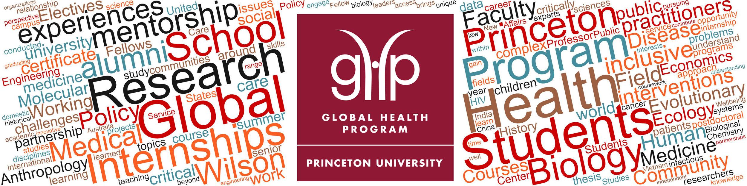 The Global Health Program, Princeton University
