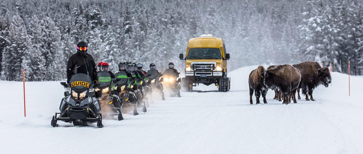 Winter Tours.jpg