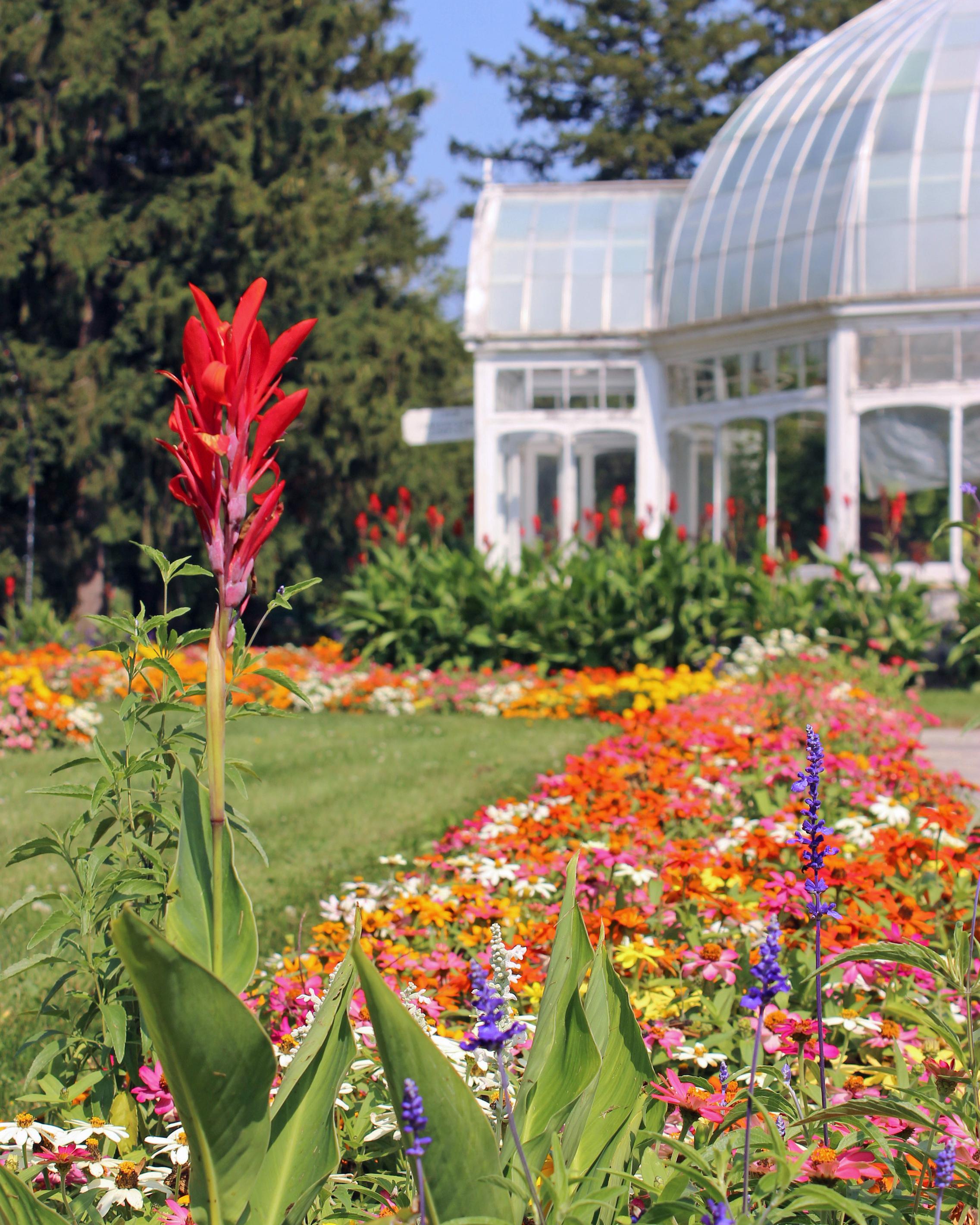 Spring Conservatory.jpg