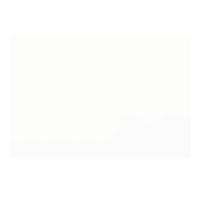 nywgf_logo.png