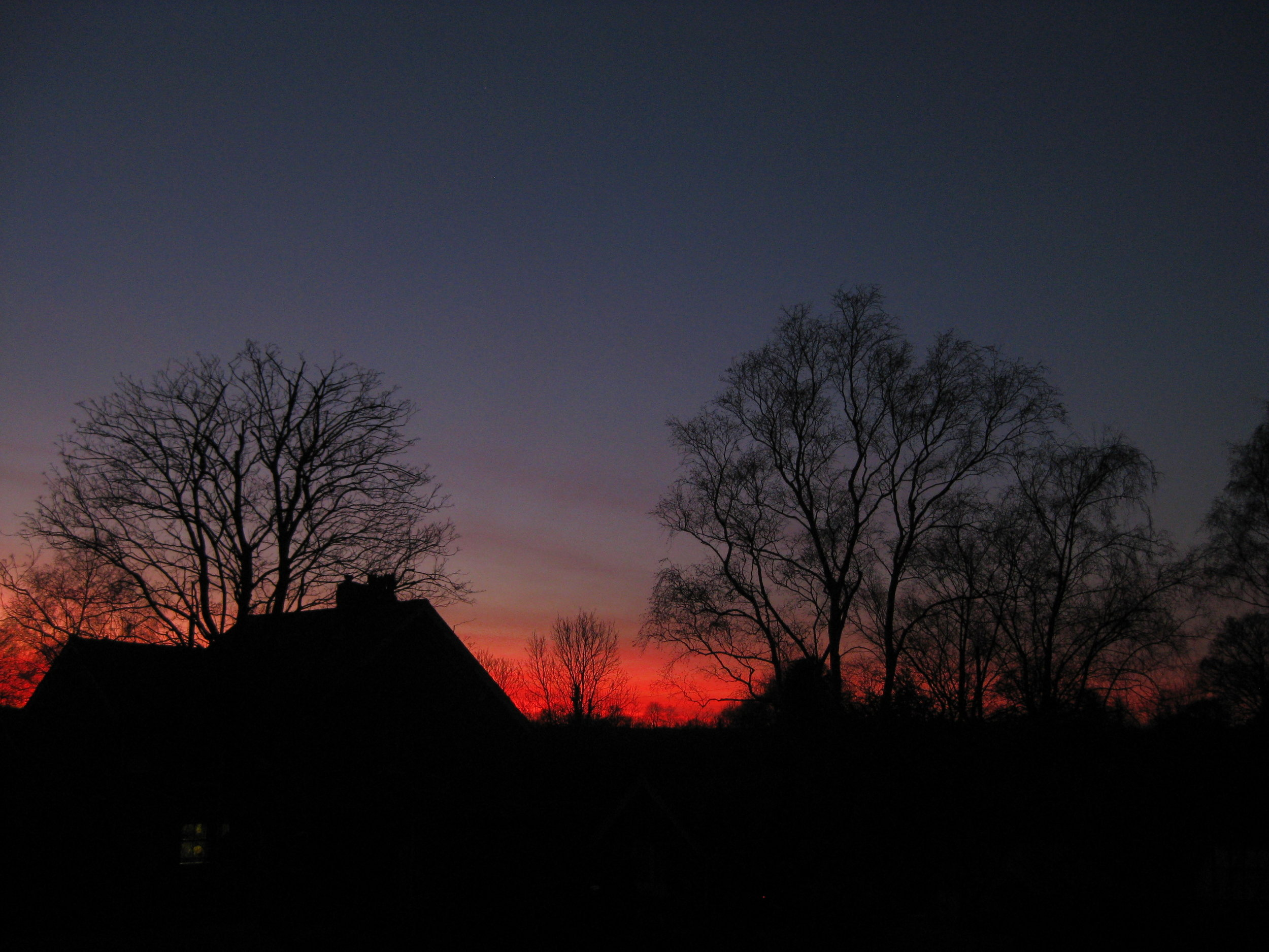 Buildings being surveyed for bats at dusk (photo by Matt Cook)