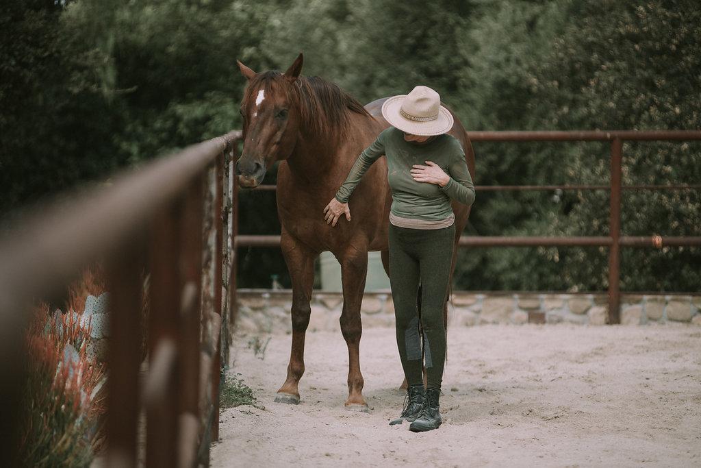 HorseMedicine-14.jpg