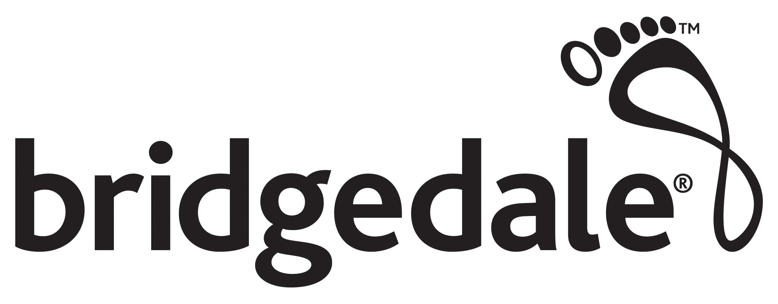 Bridgedale Logo Black Hi Res.jpg