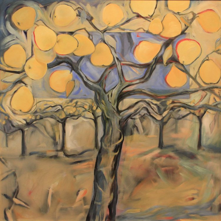 Pear Orchard - Oil on Canvas 40x40