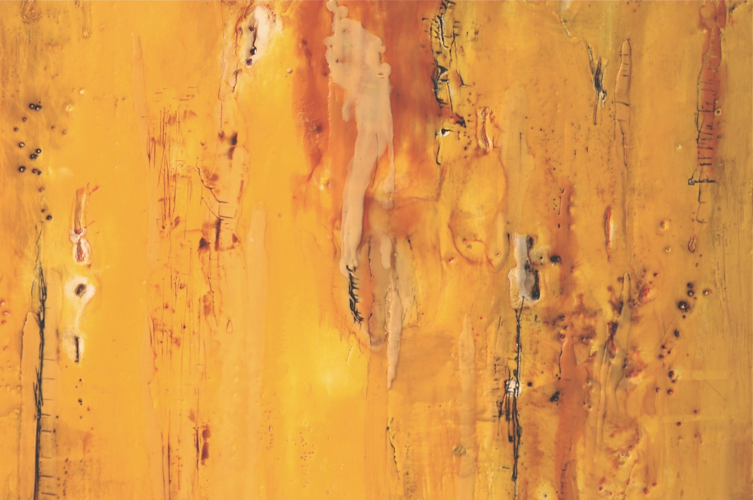 canyon wall.jpg