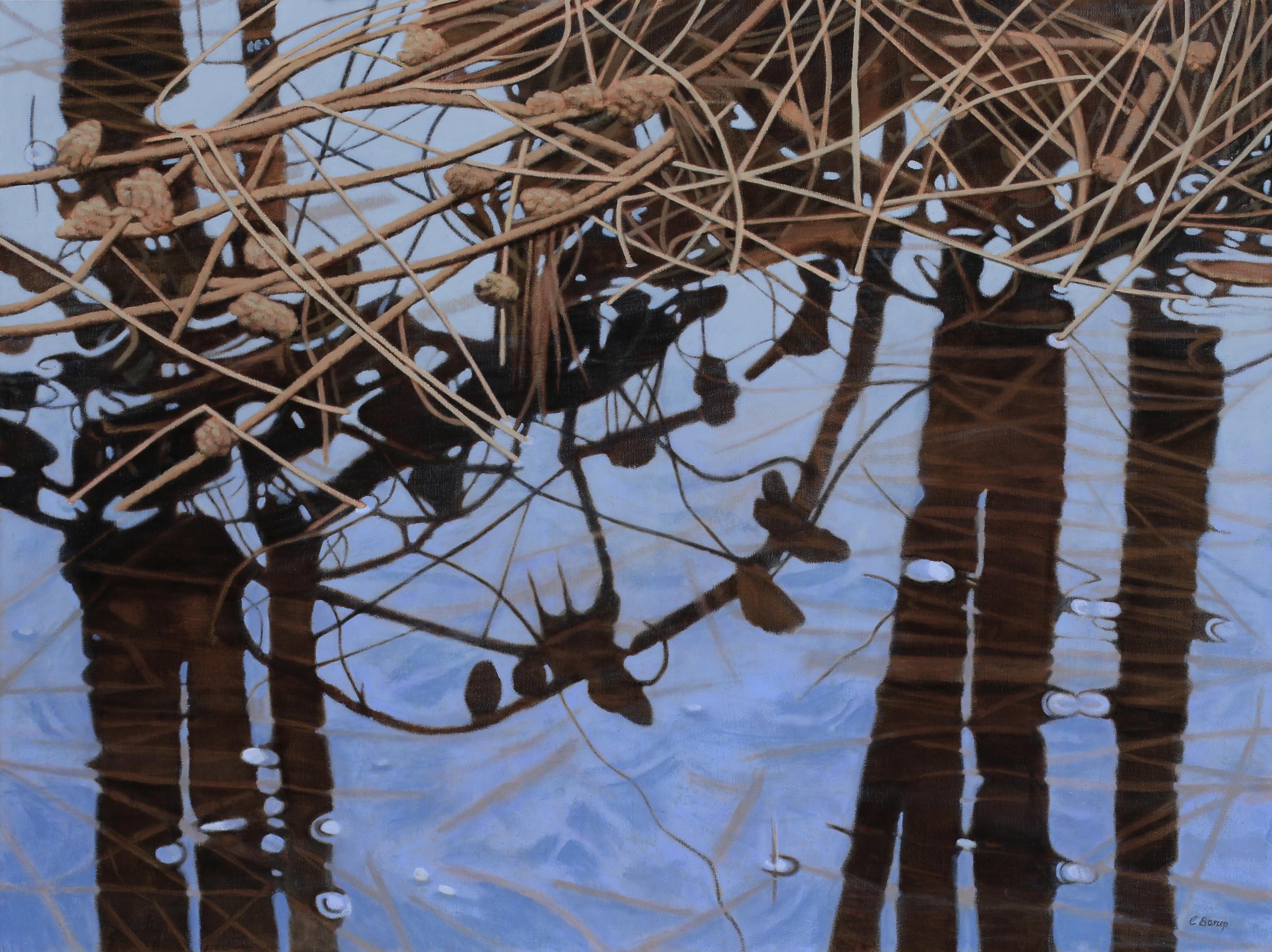 Overhanging Branch 30x40 oil on linen.JPG