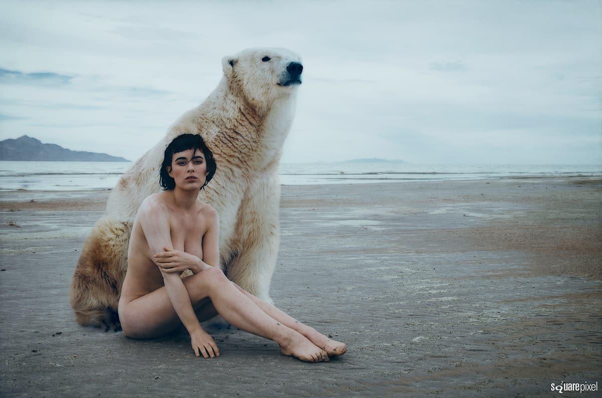 m-polar-bear.jpg