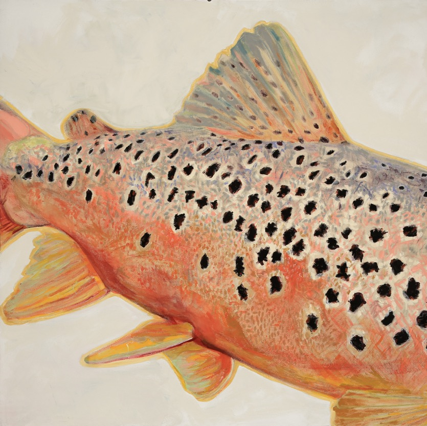 BrownTrout_5_cp.jpeg