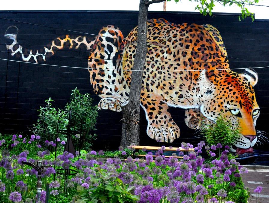 jaguarmural.jpeg