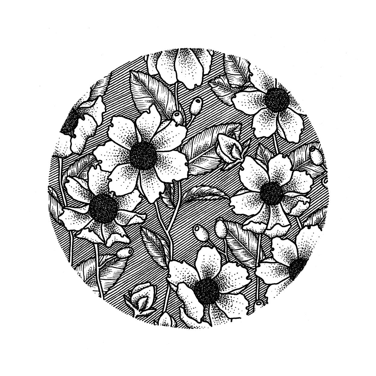 Floral Pattern 3.png