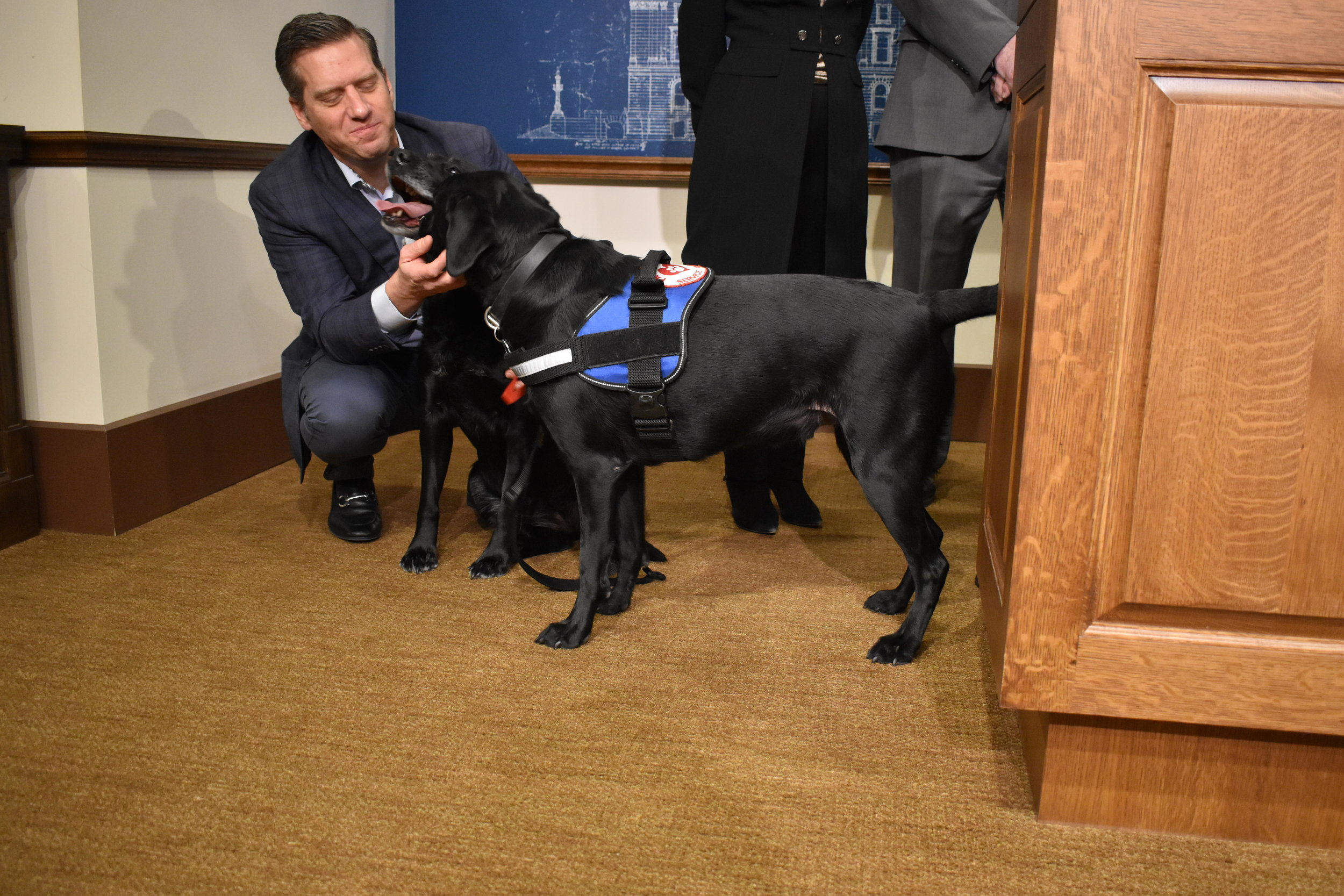 House Minority Leader Kurt Daudt, R-Crown, pets his Labrador retriever Lucy and service dog Daniel at a news conference supporting making the breed the state's official dog Tuesday, Jan. 29, 2019. Dana Ferguson / FORUM NEWS SERVICE