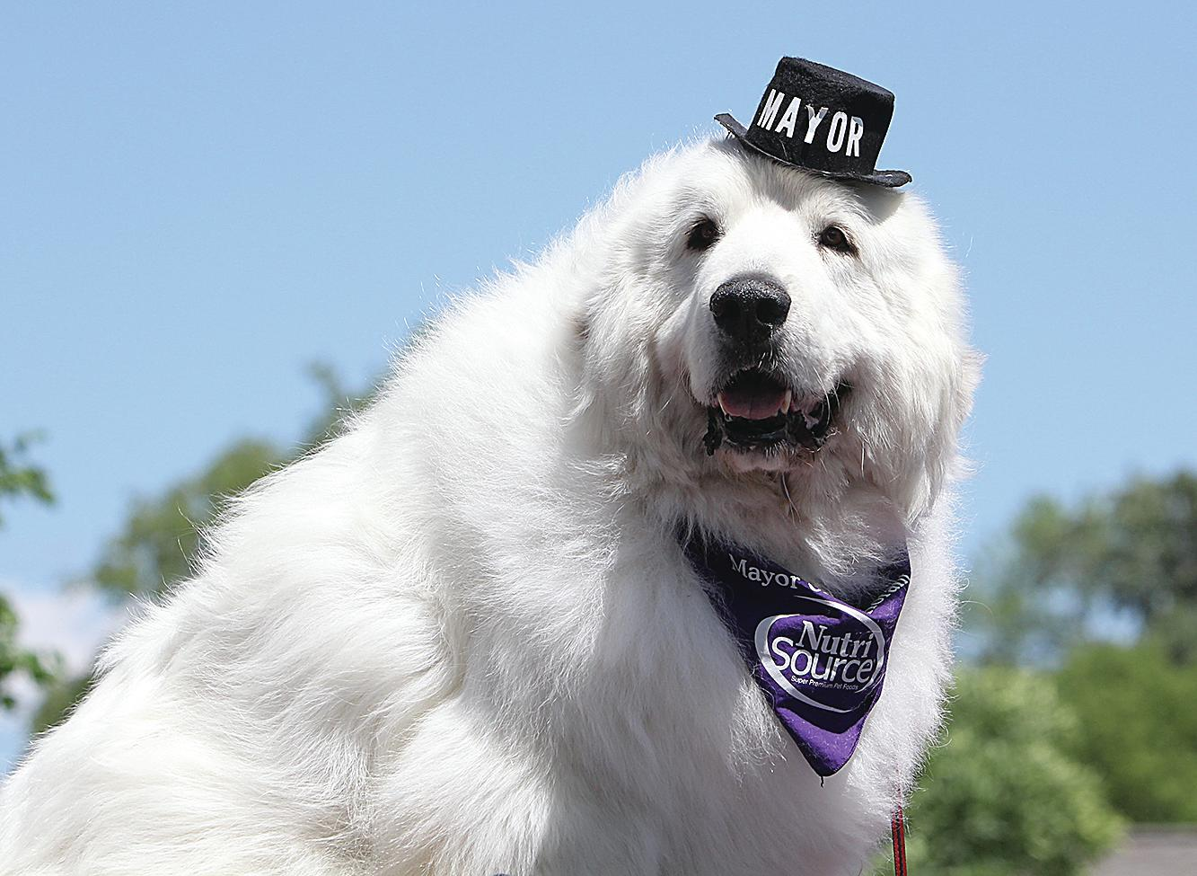 Duke was elected mayor of Cormorant in a landslide, write-in election and served four terms in office. (Brian Basham / File photo)