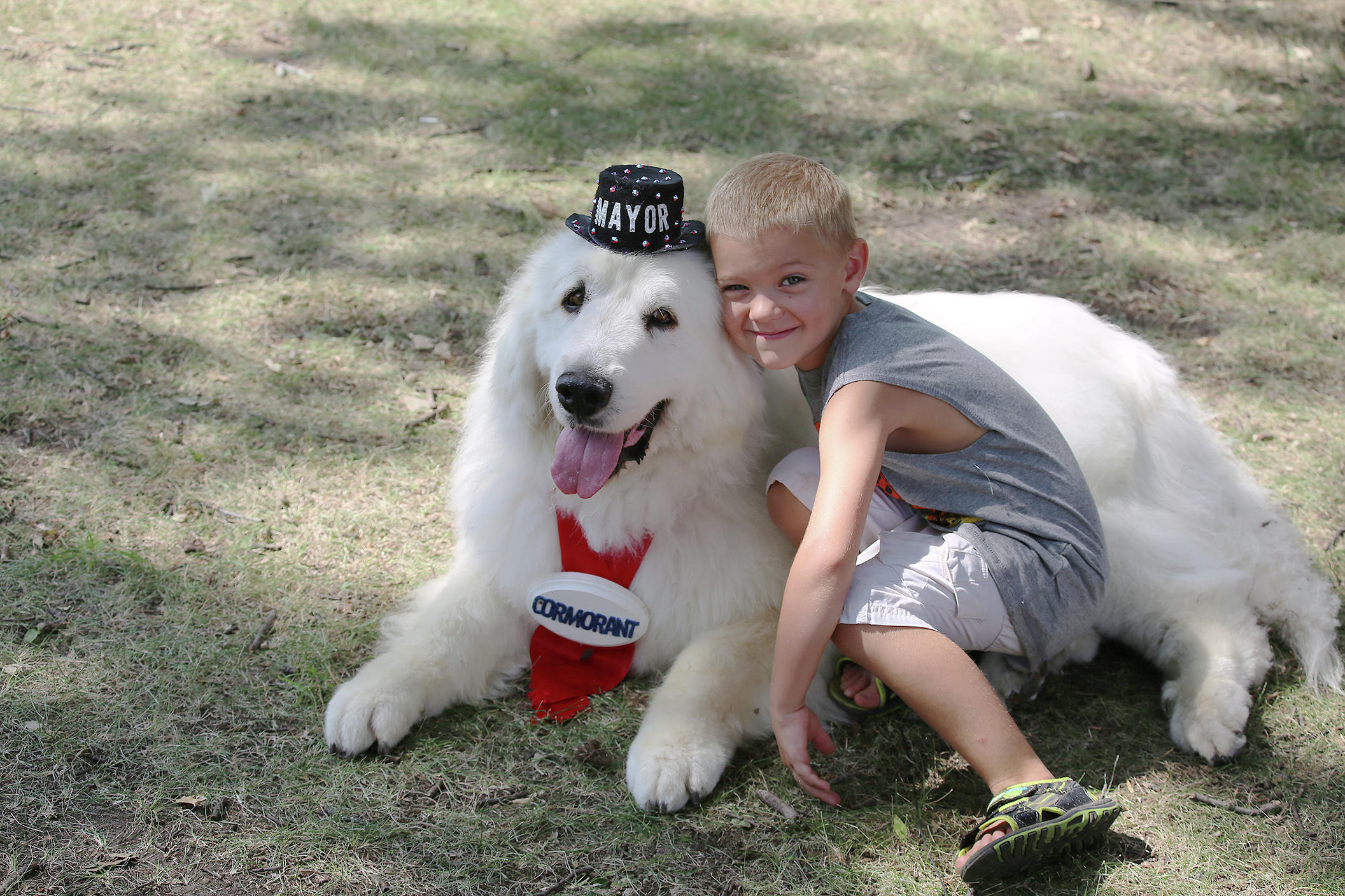 Duke the Dog became quite the celebrity after becoming mayor of Cormorant village two years ago. (file photo)