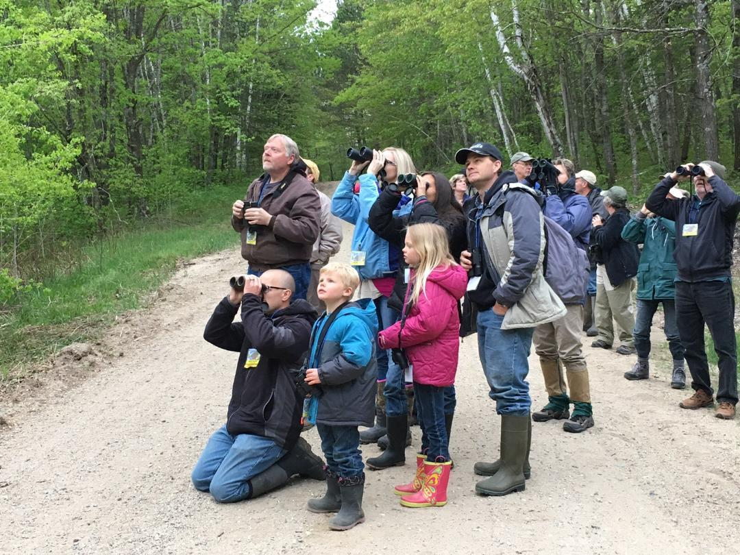The Detroit Lakes Festival of Birds, which begins its 22nd year this Wednesday, May 15, attracts birding enthusiasts of all ages. (Submitted photo)