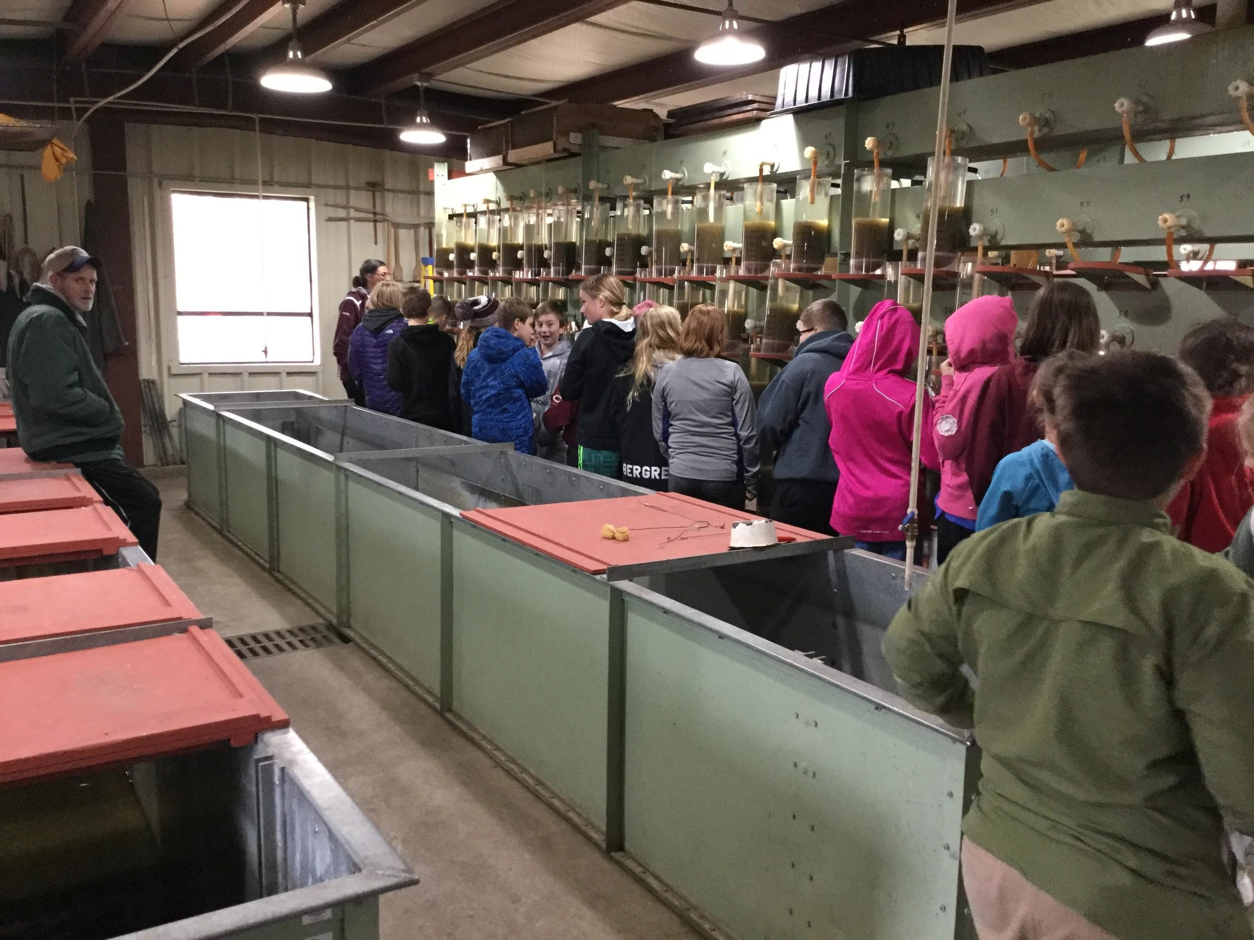 Students examine walleye eggs collected at the Walker Lake Fish Hatchery. Photo courtesy of East Otter Tail Soil and Water