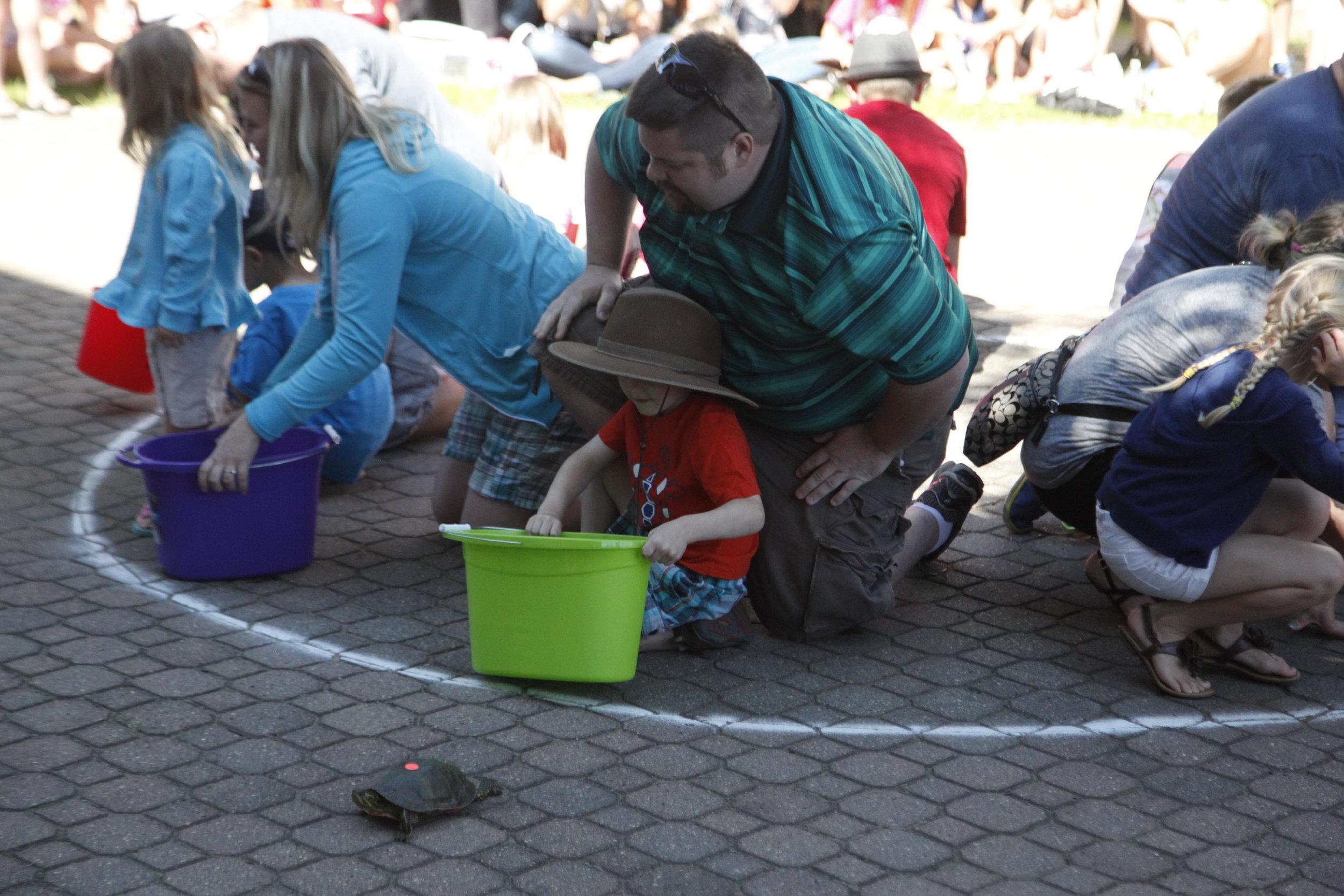 Turtle Fest is returning to Perham June 12-16. (Perham Focus File Photo)
