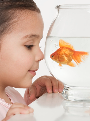 Girl_Fish_Bowl_.png