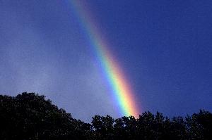 rainbow_Primordial-Light.png