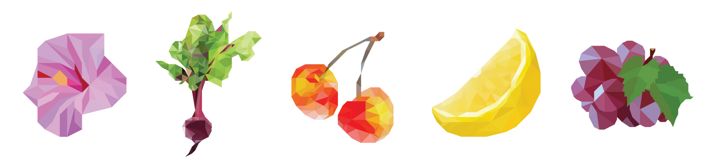 suppys-illustrations-19.png