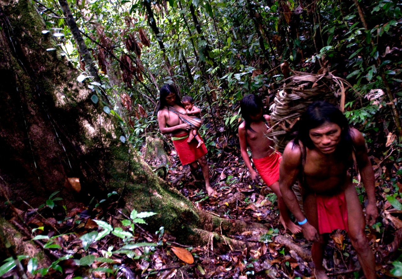Wajãpi indigenous people in their land in the Amazon. Photo: Mário Vilela/Funai