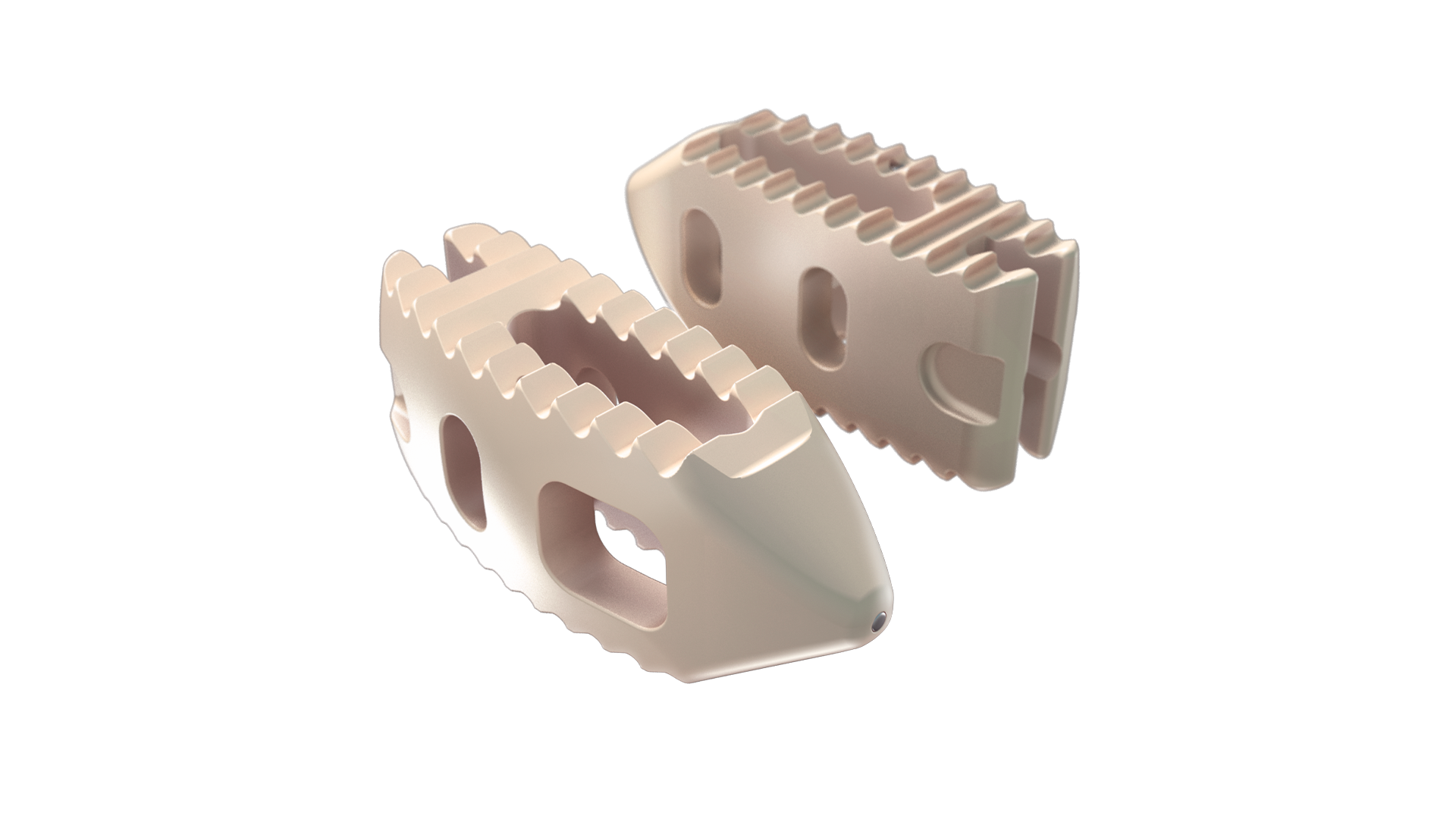 LES P-LIFT  Posterior Lumbar Interbody Fusion Technology