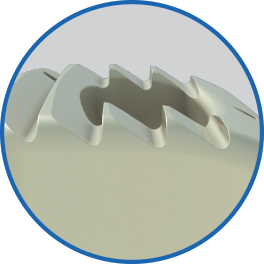 SF_Website_Squarespace_Assets_Features_Arena-C_Teeth.png