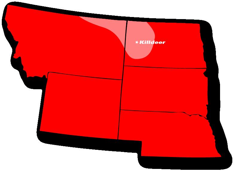 killdeer map.png