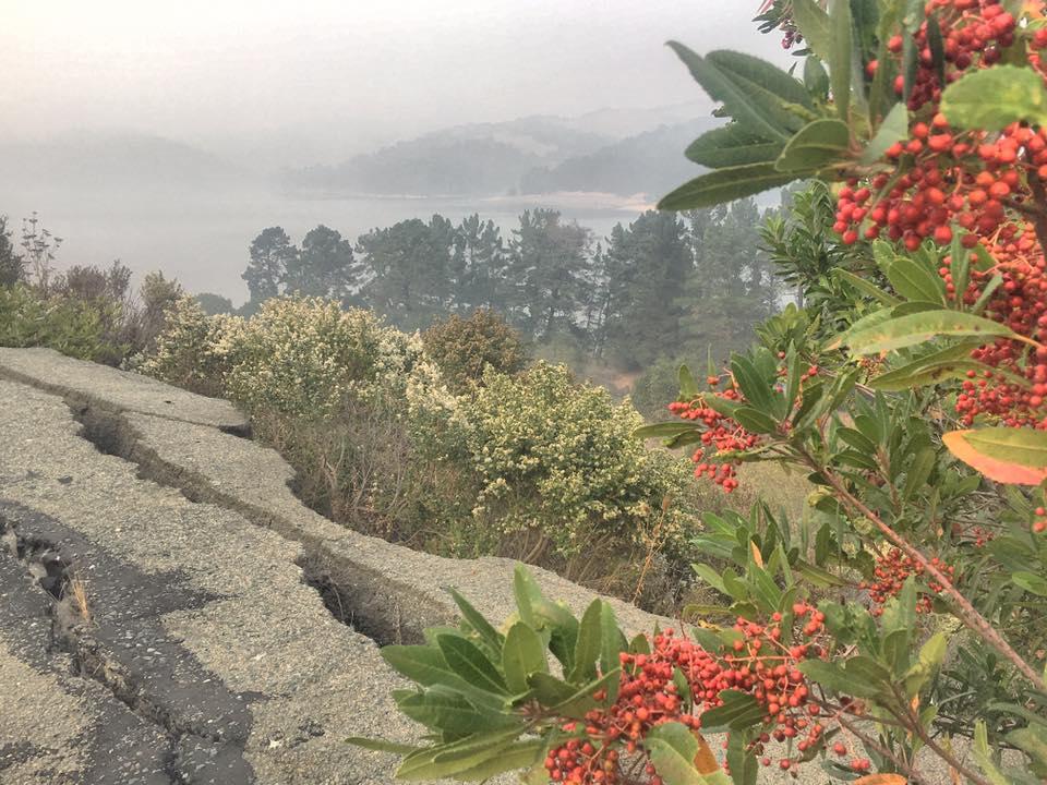 Smoky San Pablo