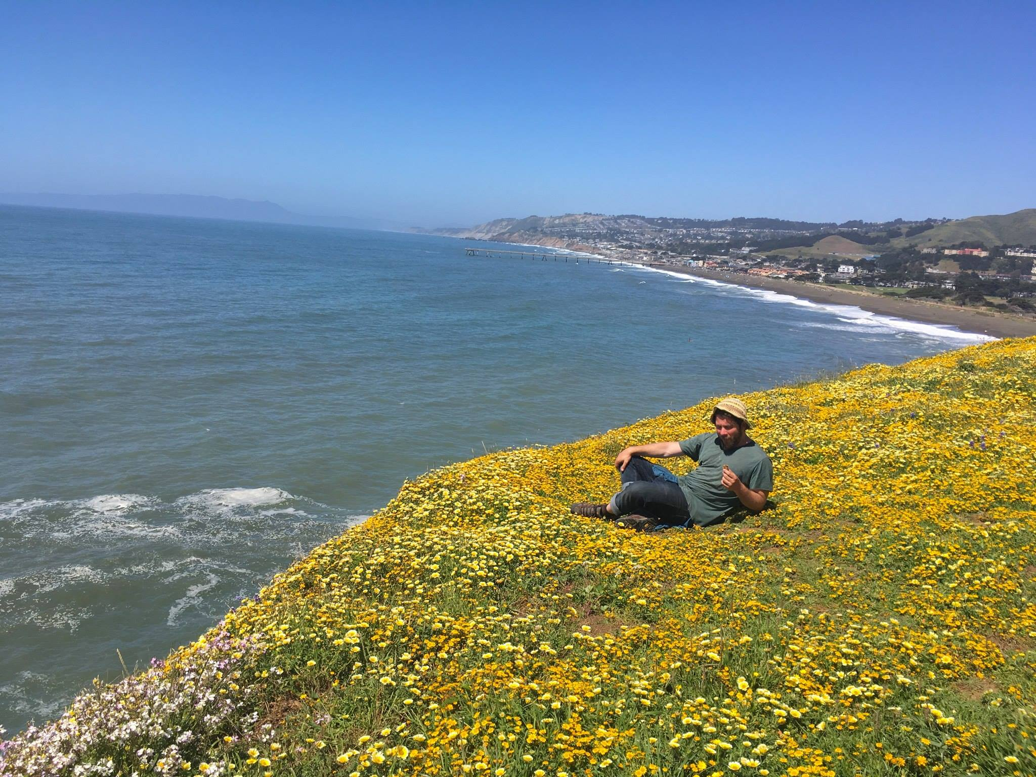 Superbloom Pacifica
