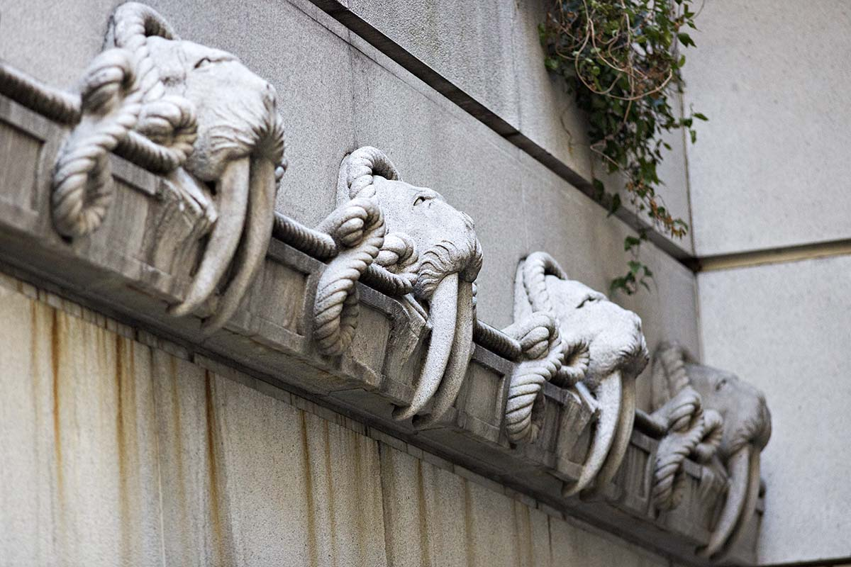 Walrus Gargoyles represent the massacres that provided oil to power a young San Francisco. 50 California St at Sansome St, previously the  Alaska Commercial Building  http://sfcitizen.com/blog/tag/gargoyles/