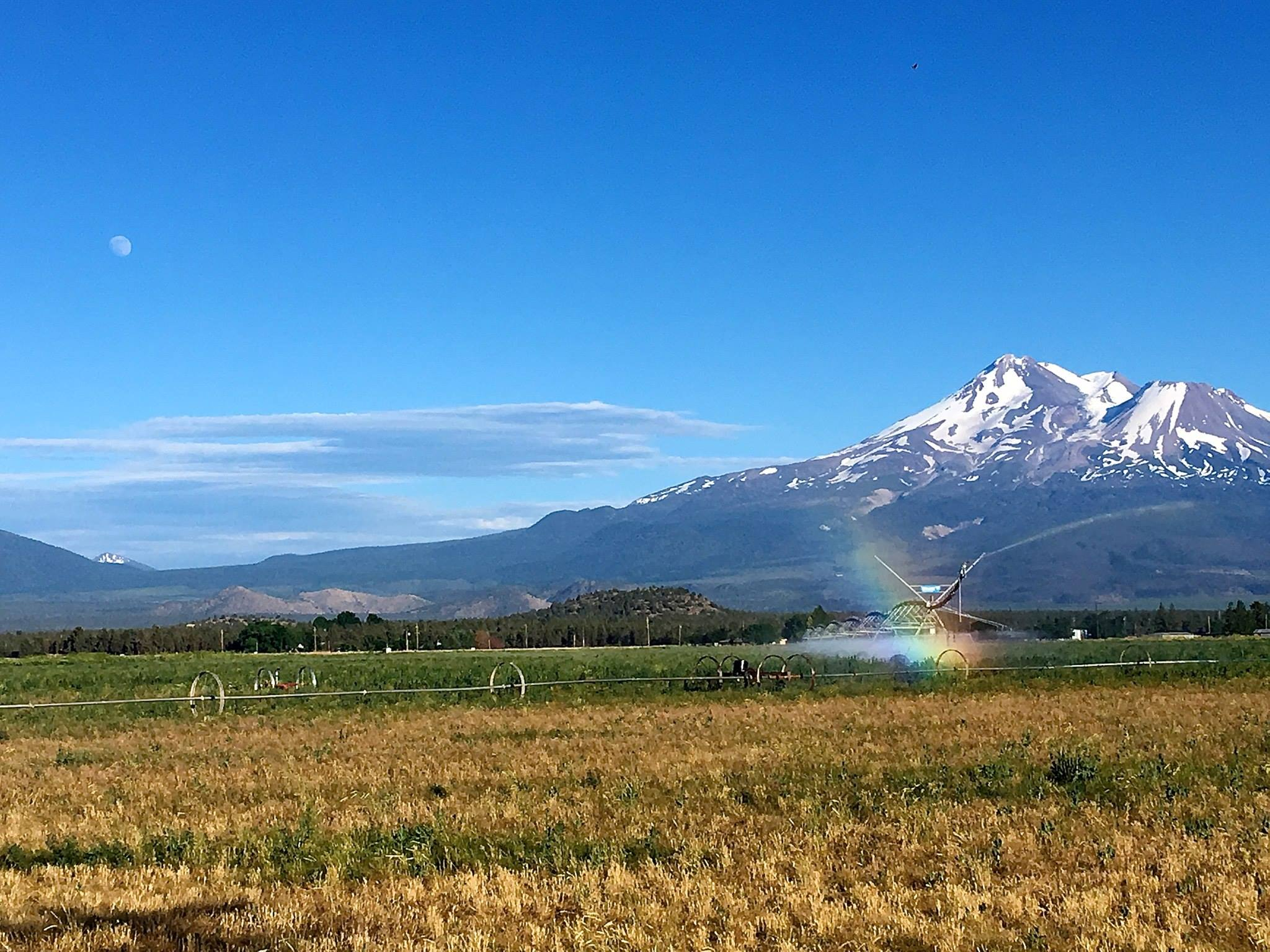 Shasta Moon Rainbow