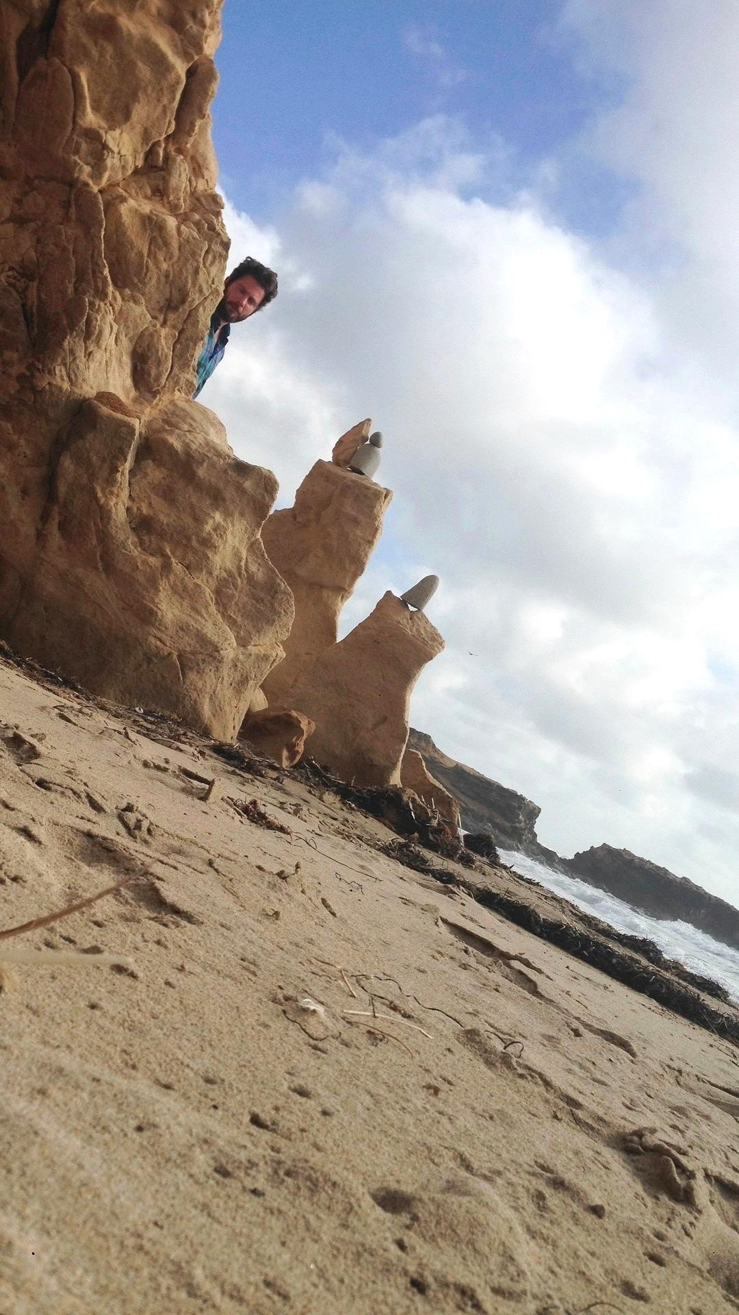 Santa Cruz Shore Creatures