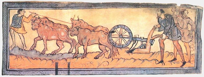 oxen tilling ancients fields