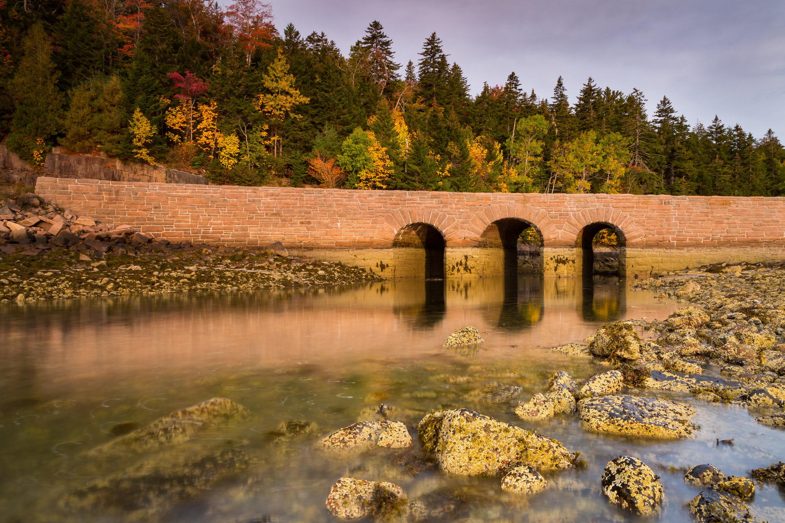 OCT2017_Maine-Acadia_CBPHOTO_HIRES8874.jpg