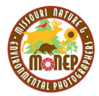 MONEP.png