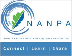 NANPA-logo-badge.png