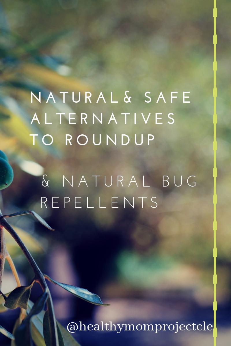 Natural Safe Alternatives to roundup.PNG