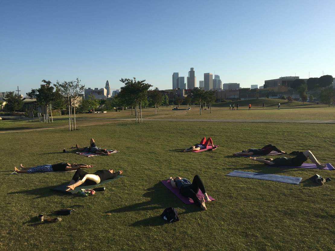 corporate yoga in the park.jpg
