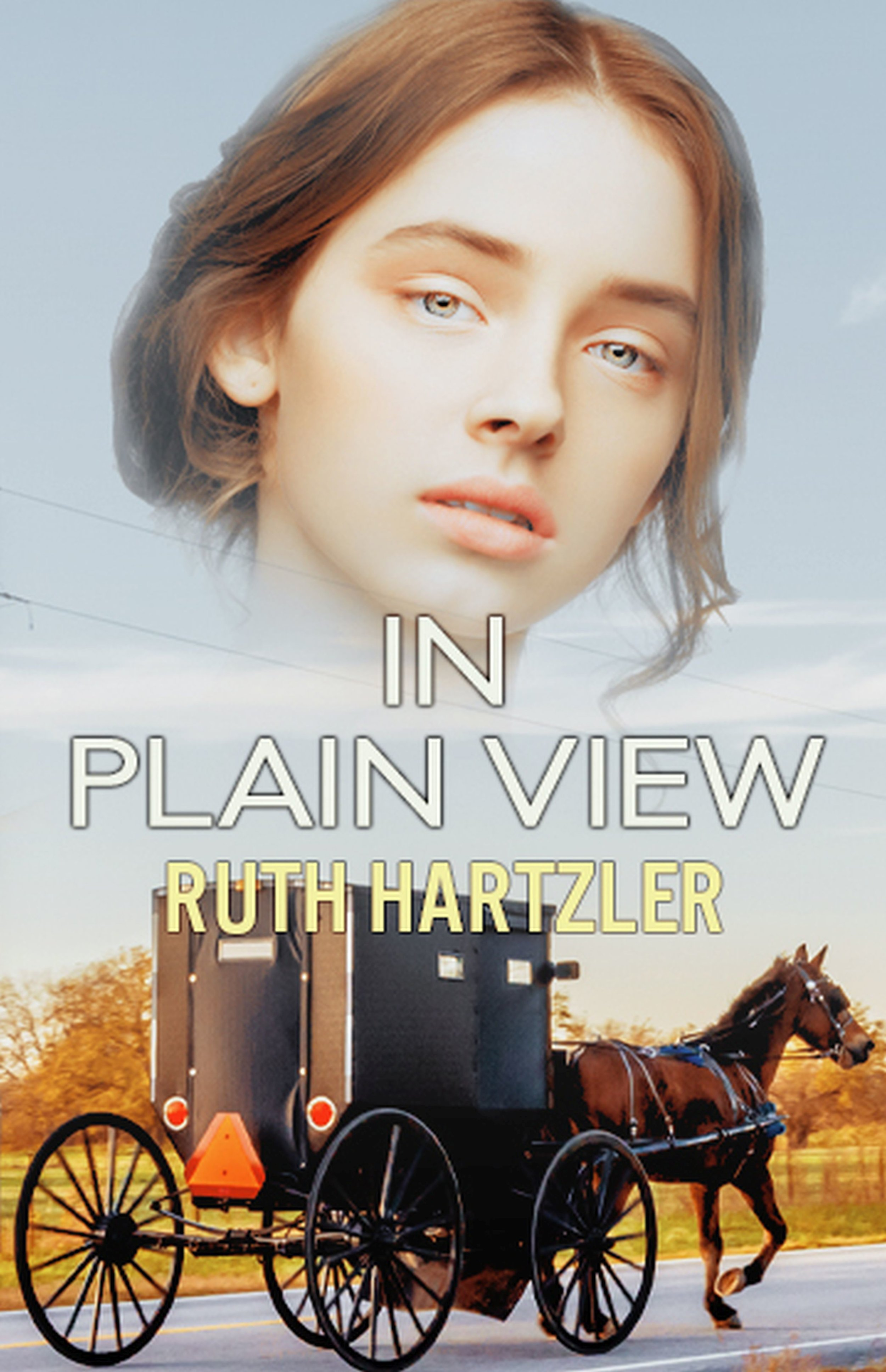 In Plain View - Amish Safe House Book 2 (Christian Romantic Suspense)U.S. Marshall, Kate Briggs, is still living undercover as an Amish woman, and is beginning to adjust to, and even enjoy, the Amish ways. Yet when a victim, a hitman for organized crime, is found in an Amish neighbor's pond, how will Kate solve the murder without arousing the suspicions of the handsome Detective Ryan Weaver, and blowing her cover? When Kate is captured by a notorious crime boss, will this be the end of her secret?AmazonNookKoboGoogle PlayAppleIn This Series1. Off The Grid2. In Plain View3. Safe HeartsAlso available as 3 Book Box Set, Amish Safe House Three Book Box Set