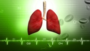 Lung1.jpg
