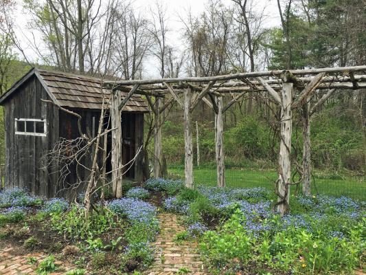 Pom's Cabin Farm1.jpg